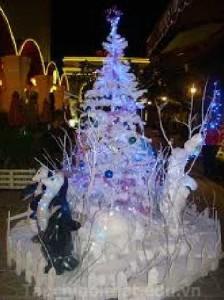 Cây Noel phủ tuyết đẹp