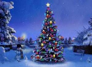 Trang trí cây  thông Noel ấn tượng