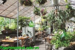Bài trí phòng ăn trong nhà kính