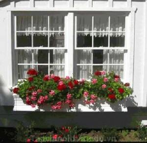 Trang trí cửa sổ cho không gian sống thêm đẹp