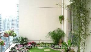 Thiết kế vườn cho sân thượng