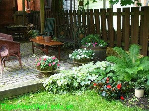 Bố trí không gian sân vườn đẹp