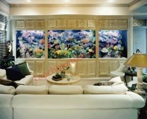 Vị trí bể cá trong phòng khách?p phong th?y