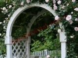 Quang cảnh nhà vườn luôn xanh mát với những bóng cây um tùm