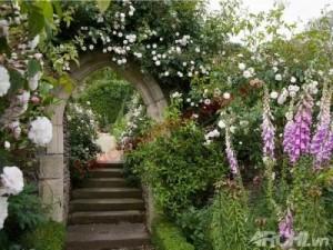 Để hóa giải nó bạn hãy giữ lối đi từ cổng vào nhà được sáng sủa và trồng nhiều cây.