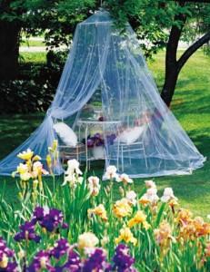Trang trí khoảng vườn xung quanh chỗ đặt ghế