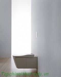 Thiết kế bồn vệ sinh đơn giản