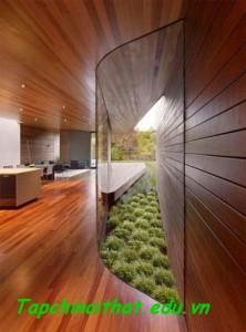 Tường ốp gỗ