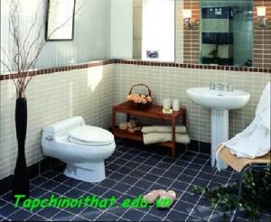Phòng tắm với thiết bị vệ sinh
