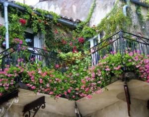 Tràn ngập hoa với ban công đẹp