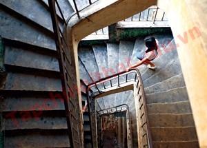 Cầu thang trong chung cư cũ này khá chuẩn về cáchchia bậc và xử lý mũi bậc tại các vị trí rẽ quạt