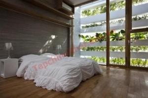 Phỏng ngủ xanh mướt với vườn treo