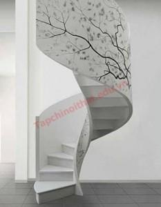 Thiết kế cầu thang lượn vòng theo tường