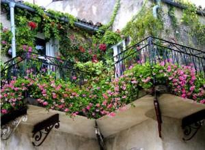 Ban công nhà đẹp không nên bịt kín làm mất đi không gian thoáng đãng