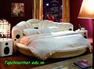 Hưng phấn trên giường tròn