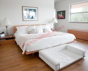 Giường ngủ hợp phong thủy đảm bảo sức khỏe cũng như hạnh phúc cho con người.